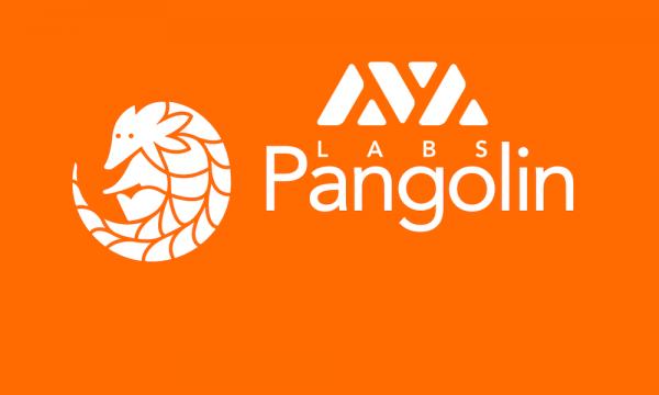 Avalanche анонсировал запуск Pangolin DEX