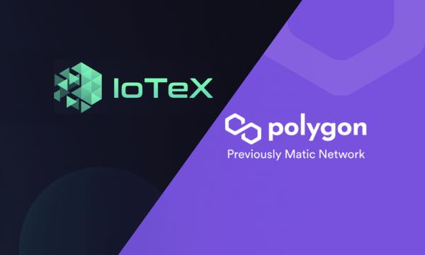 Кросс-чейн мост между IoTeX иPolygon будет запущен  10 июня
