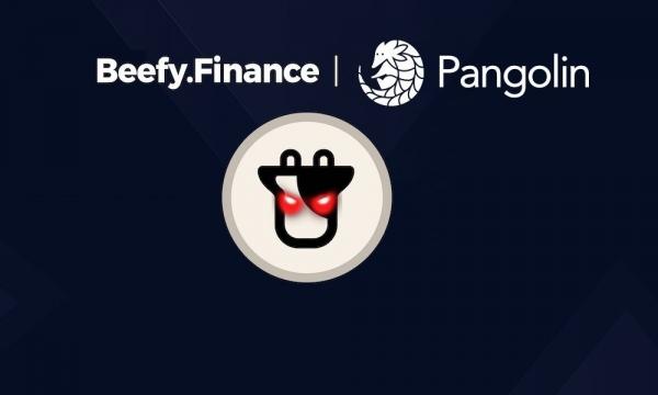 Beefy Finance на Avalanche Network открыла 6 пулов ликвидности для Pangolin PNG