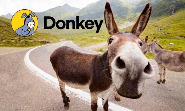 В Корее запустился DeFi сервис Donkey для увеличения масштабируемости «монет кимчи»